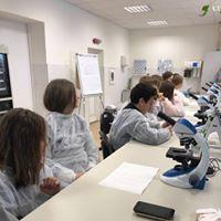 laboratorija1