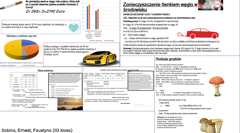projekt (3)